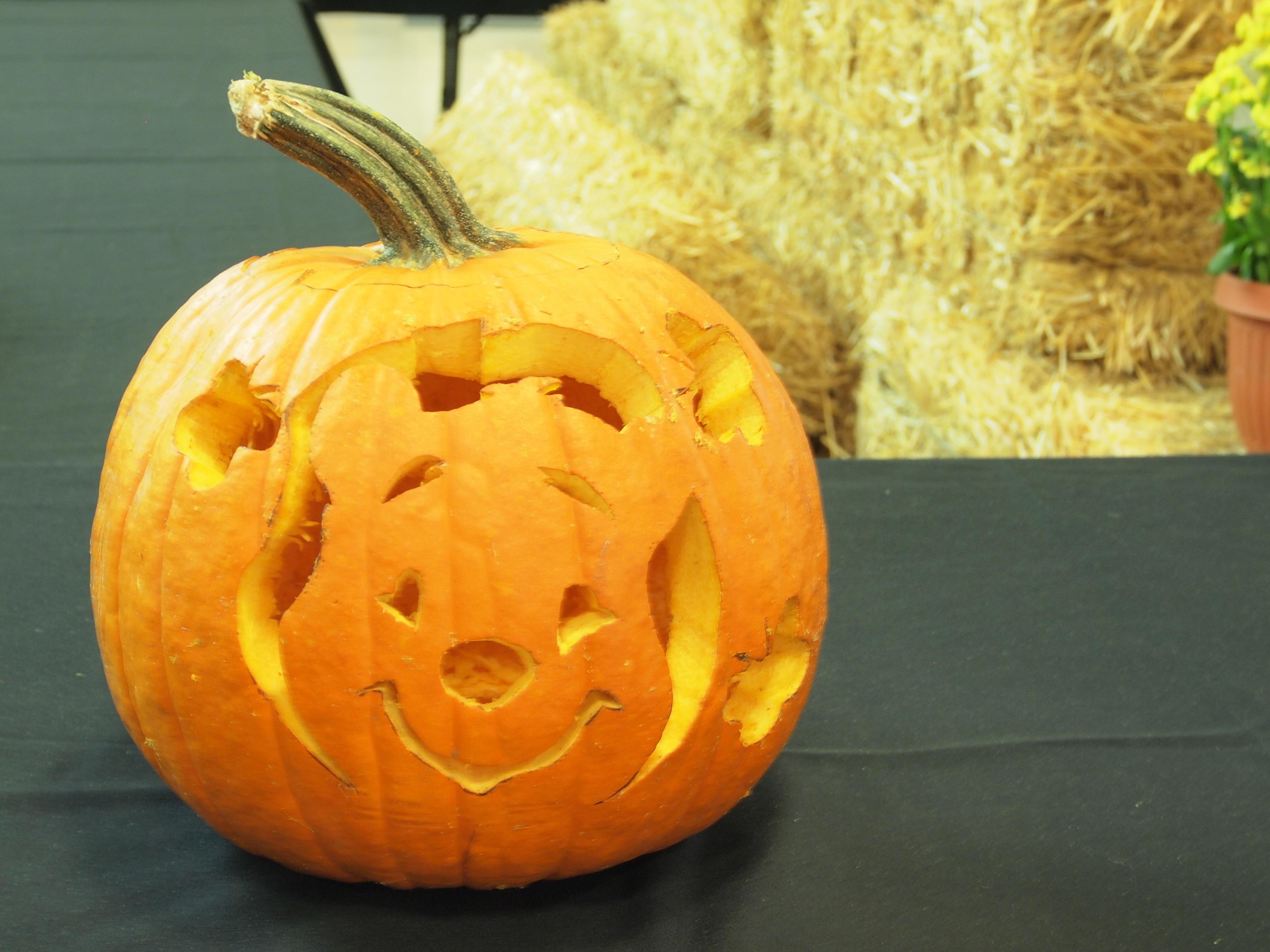 Winnie The Pooh Pumpkin Easy Home Decorating Ideas